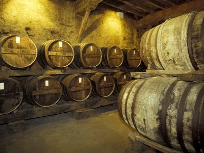 Aging of Armagnac in Gascony Oak Barrels, Aquitania, France