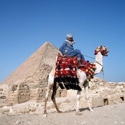 Pyramid Giza Egypt Man on Camel