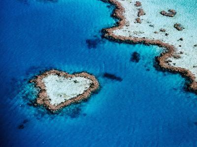 Heart-Shaped Reef, Hardy Reef, Near Whitsunday Islands, Great Barrier Reef, Queensland, Australia