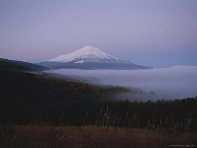 Mt. Fuji Rises Above a Fog-Covered Forest