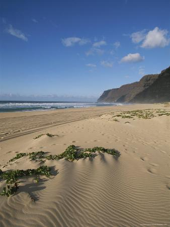 Beach in Polihale State Park
