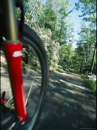 View of the Front Wheel of a Bicycle Speeding Along a Dirt Trail