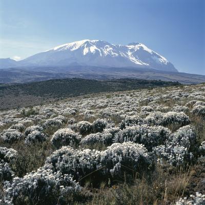 Mount Kilimanjaro, the Breach Wall, as Seen From Shira Plateau