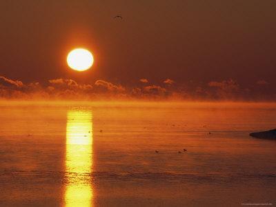 Brilliant Sunrise over Nosuke Bay with Water Birds