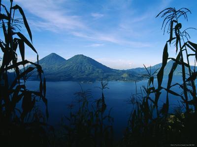 Corn Grows Around Lake Atitlan
