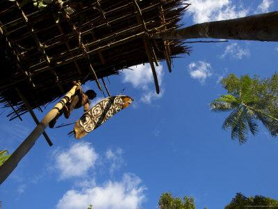 Korowai Man Climbing Down from His Treehouse