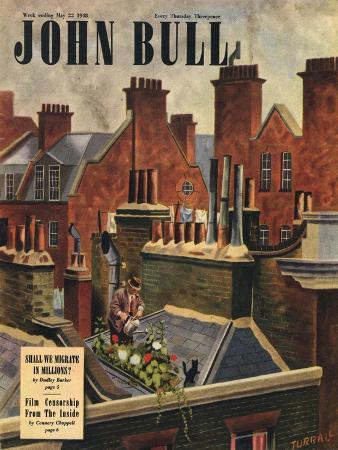 John Bull, Roof Gardens Kittens Watering Magazine, UK, 1948