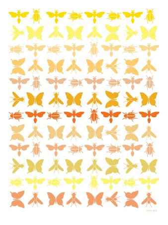 Orange Insects