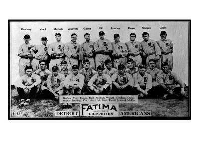 Detroit, MI, Detroit Tigers, Team Photograph, Baseball Card