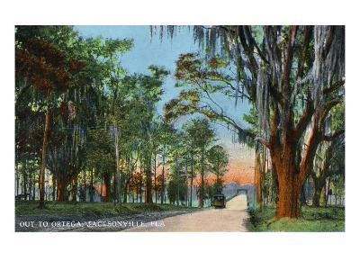 Jacksonville, Florida, View of a Street Heading towards Ortega