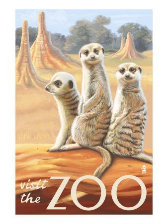 Visit the Zoo, Meerkats Scene
