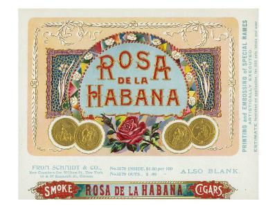 Rosa de la Habana Brand Cigar Box Label