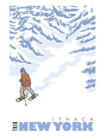 Stylized Snowshoer, Ithaca, New York
