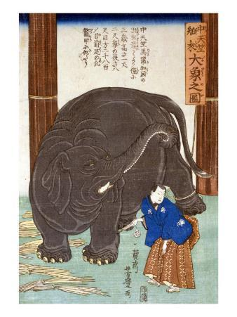 Big Imported Elephant from India, Japanese Wood-Cut Print