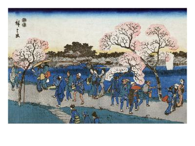 Viewing Cherry Blossoms along the Sumida River, Japanese Wood-Cut Print