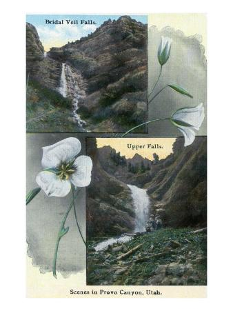 Provo Canyon, Utah, Views of Bridal Veil and Upper Falls with Flowers