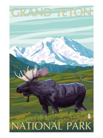 Grand Teton National Park, Wyoming, Moose and Mountains
