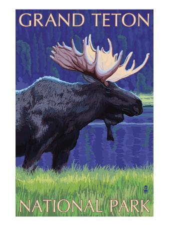 Grand Teton National Park, Wyoming, Moose in the Moonlight