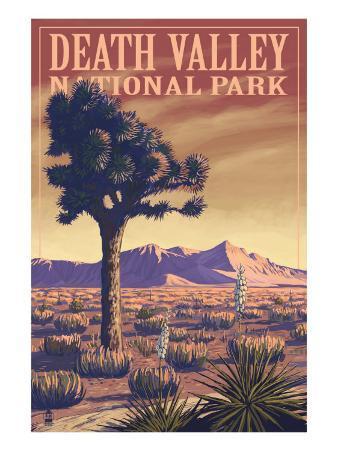 Death Valley National Park, California, Joshua Tree View