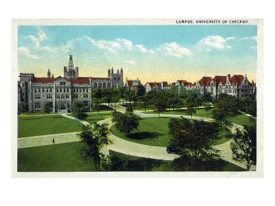 Chicago, Illinois, Panoramic View of University of Chicago and Grounds