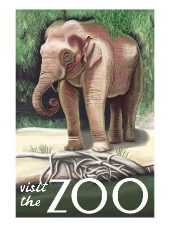 Visit the Zoo, Asian Elephant