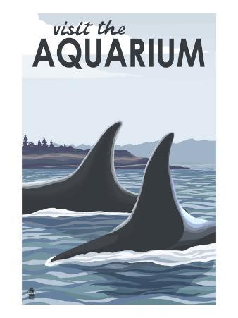 Visit the Aquarium, Orca Fins