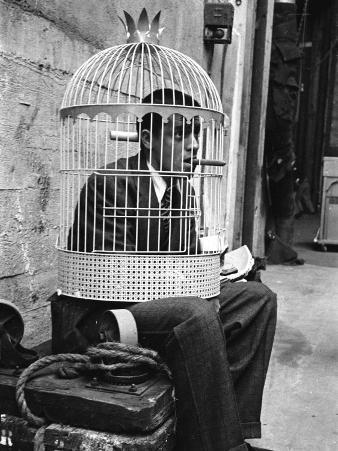 """Jerry Lewis Clowning around by Wearing a Birdcage over His Head During Filming of """"The Stooge"""""""