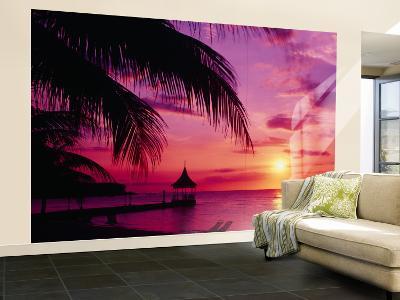 Sunset, Palm Trees, Beach, Water, Ocean, Montego Bay Jamaica