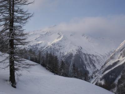 Winter Snow Scene of the French and Italian Alps, Chamonix, France