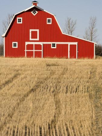 Wheat Fields and a Red Barn, Saskatchewan, Canada