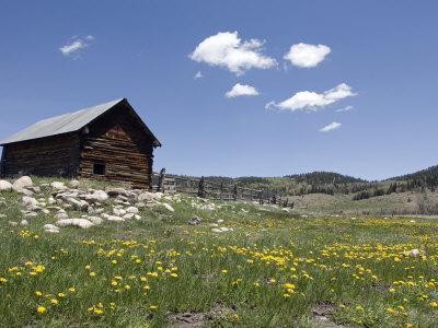 Log Cabin on the High Country Ranch on the Continental Divide, Tres Piedras, New Mexico