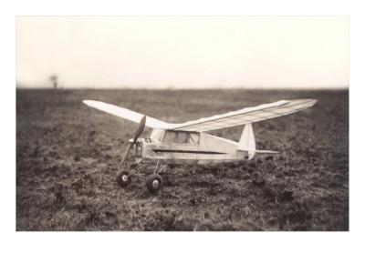 Model Airplane in Field