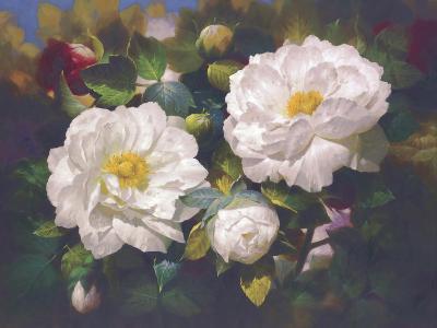 Full Blossom I