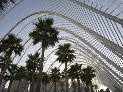L'Umbracle, Ciutat De Les Arts I De Les Ciencies, City of Arts and Sciences, Valencia, Spain