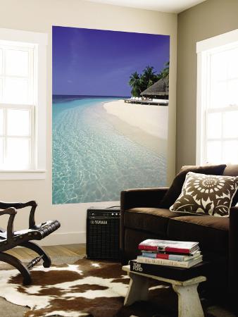 Tropical Beach, Maldives, Indian Ocean
