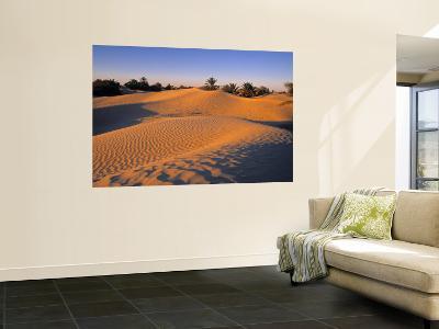Sahara Desert, Douz,Tunisia