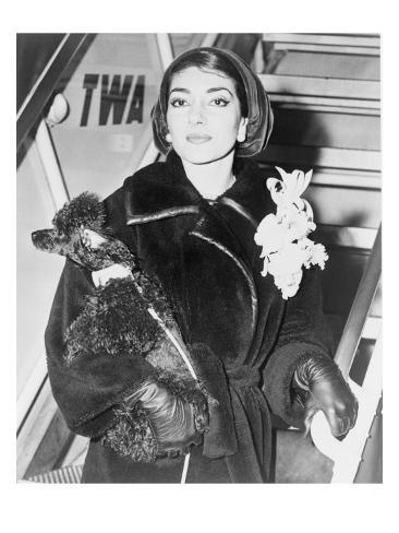CANVAS Maria Callas and Dog Arriving at Airport Art Print Poster