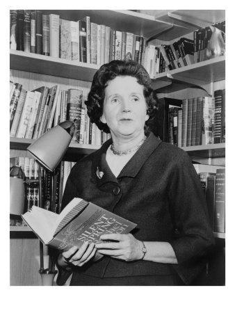 Rachel Carson, Biologist and Writer, Holding Her Ground Breaking Book, the Silent Spring, 1963