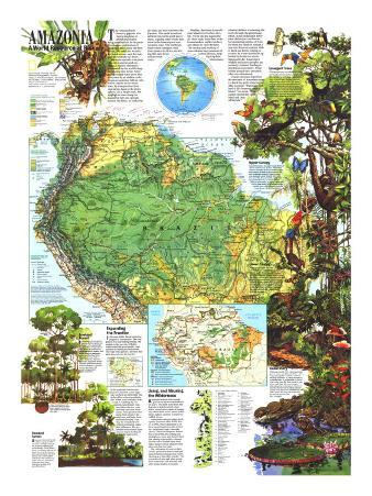 1992 Amazonia, a World Resource At Risk Map