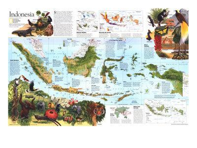 1996 Indonesia Theme Map