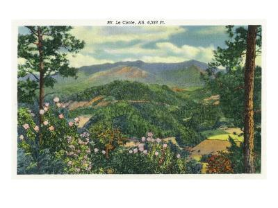 Great Smoky Mts. Nat'l Park, Tn - Panoramic View of Mt. Le Conte, c.1940