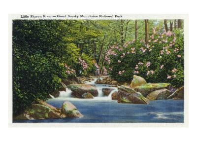 Great Smoky Mts. Nat'l Park, Tn - Scenic View of Little Pigeon River, c.1936