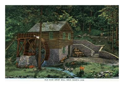 Norris, Tennessee - View of an Old Rice Grist Mill Near Norris Dam, c.1944