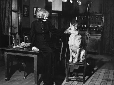 Madame Maud Gonne Macbride, Standing in the Dining Room with Cassan, One of Her Dogs