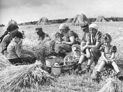 Peasant Farmers Eating Lunch in Wheat Fields