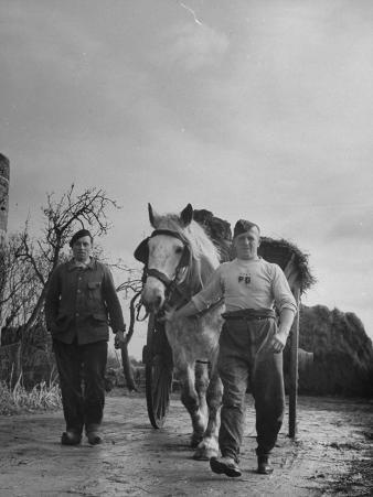 German Prisoner of War Working as Farm Hand for French Farmer