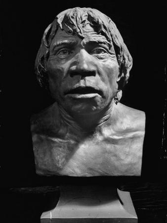Close Up Shot of a Bust of the Piltdown Man Displaying an Expression of Curious Disbelief