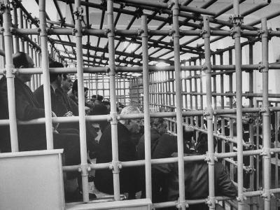 113 Members of Sicily's Mafia in Zoo-Like Cages While on Trial for Assorted Crimes, Southern Italy