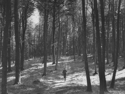 Gunder Hagg Training in the Woods Near Malmo