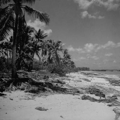 Shoreline at Bikini Atoll on Day of Atomic Bomb Test